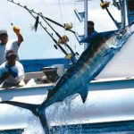 Miami_sportfishing-1.jpg