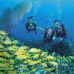 snorkeling-in-bahamas-2.jpg